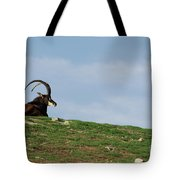 Sable Antelope On Hill Tote Bag