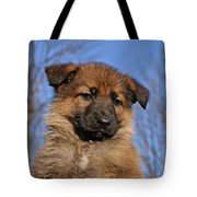 Sable German Shepherd Puppy II Tote Bag by Sandy Keeton