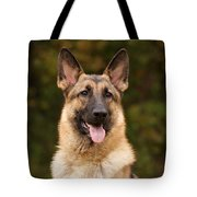 Sable German Shepherd Tote Bag