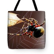 Sac Spider Catches A Leaf Tote Bag