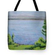 Sacandaga Lake Tote Bag