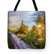 Sacket's Harbor Historic Battlefield Tote Bag