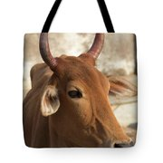 Sacred Cow Tote Bag