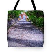 Sacromonte Abbey Entrance Tote Bag