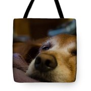 Sad Dog Tote Bag
