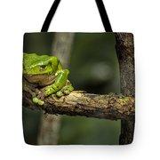 Sad Green Tote Bag