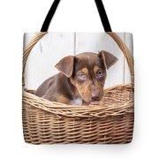 Sad Puppy Tote Bag
