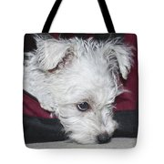 Sad Puppy Tote Bag