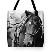 Saddled To Go Tote Bag
