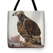 Safari Hawk Tote Bag