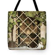 Safe Harbor Tote Bag by JAMART Photography