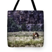 Safe In The Valley Tote Bag