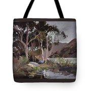 Safe Shelter  - Plein Air - Catalina Island Tote Bag