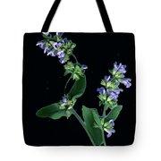 Sage Blossom  Tote Bag