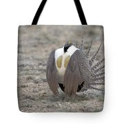 Sage Grouse Tote Bag