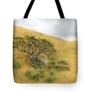 Sage Under Oak Tote Bag