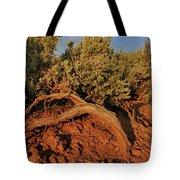 Sagebrush At Sunset Tote Bag