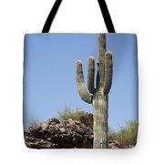 Saguaro 3 Tote Bag