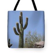 Saguaro 6 Tote Bag