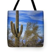 Saguaro Cactus Of The Desert Southwest Tote Bag