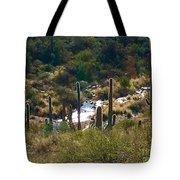 Saguaro Creek Tote Bag