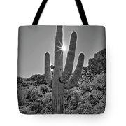 Saguaro In The Sun Tote Bag