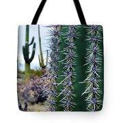 Saguaro National Park Portrait Tote Bag