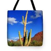 Saguaro Np Tote Bag