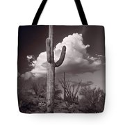 Saguaro Sunset Arizona Bw Tote Bag
