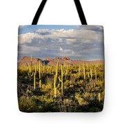 Saguaronatlparkeveninglight Tote Bag