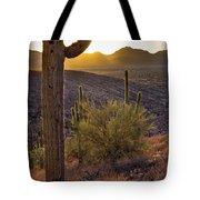 Saguaros At Sunset Tote Bag