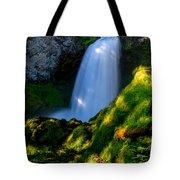 Sahalie Falls Tote Bag