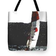 Sailing In Acapulca Tote Bag