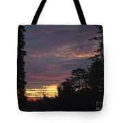 Sailors Take Warning Tote Bag