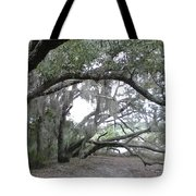 Saint Andrews Park Florida Tote Bag