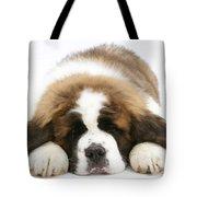 Saint Bernard Puppy Sleeping Tote Bag