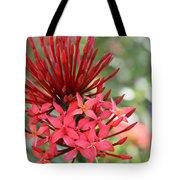 Saint Lucia Flower IIi Tote Bag