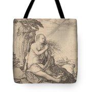 Saint Mary Magdalene In The Desert Tote Bag