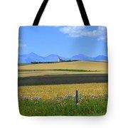 Saint Henry's Panorama Tote Bag