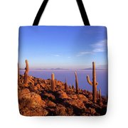 Salar De Uyuni And Cacti At Sunrise Tote Bag