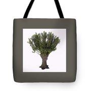 Salix Viminalis Tree Tote Bag