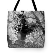 Salmon River Autumn Tote Bag