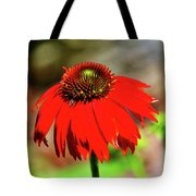 Salsa Red Coneflower Tote Bag