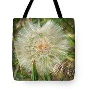 Salsify Seed Head Tote Bag
