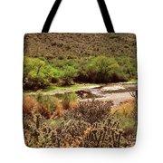 Salt River Serenity Tote Bag