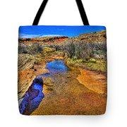 Salt Wash Near Wolf Ranch Arches Np Moab Utah Tote Bag