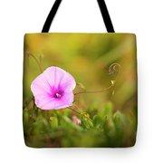 Saltmarsh Morning Glory Flower  Tote Bag