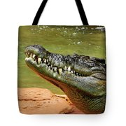 Saltwater Crocodile By Kaye Menner Tote Bag