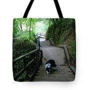 Salvesen Steps North Tote Bag
