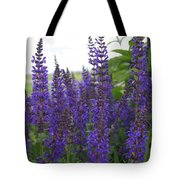 Salvia In The Spring Tote Bag